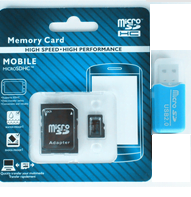 32GB Micro SD Card with SD Adapters